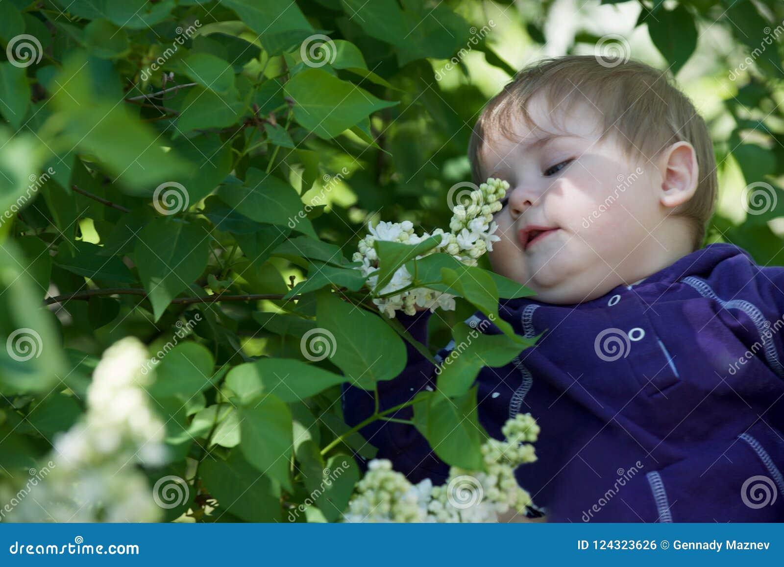 Little Boy op een Groene Achtergrond