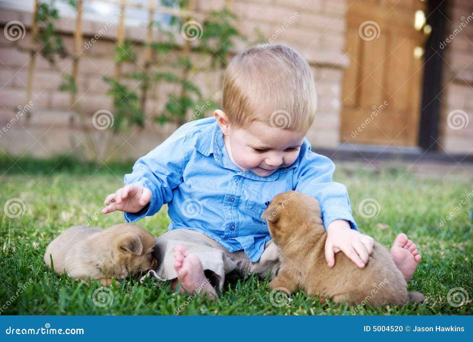 little boy petting dog stock photo   image 5004520