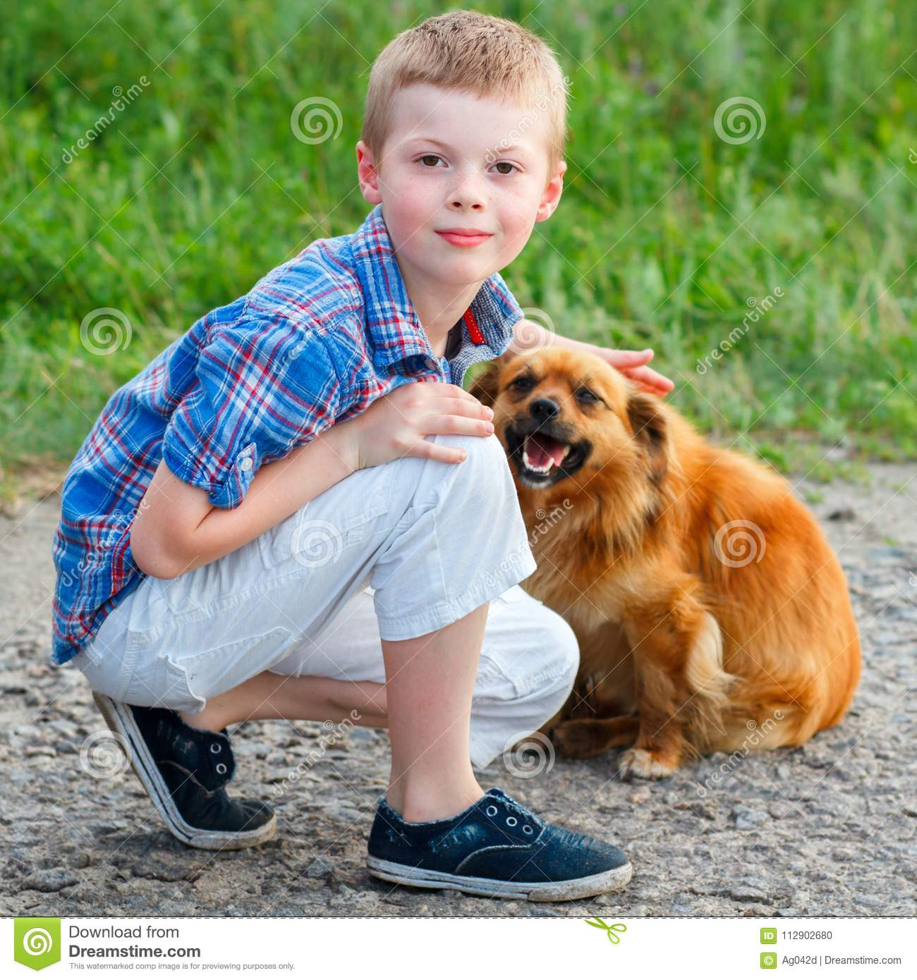 6b08b5725 Little Boy In A Plaid Shirt Sitting On The Road With A Red Dog Stock ...