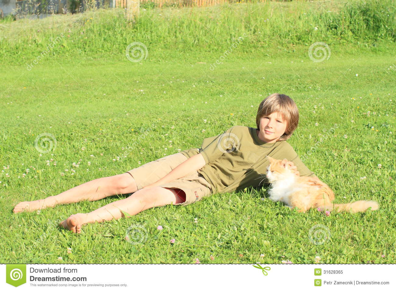 https://thumbs.dreamstime.com/z/little-boy-playing-cat-sitting-barefoot-lying-meadow-orrange-white-meadow-31628365.jpg
