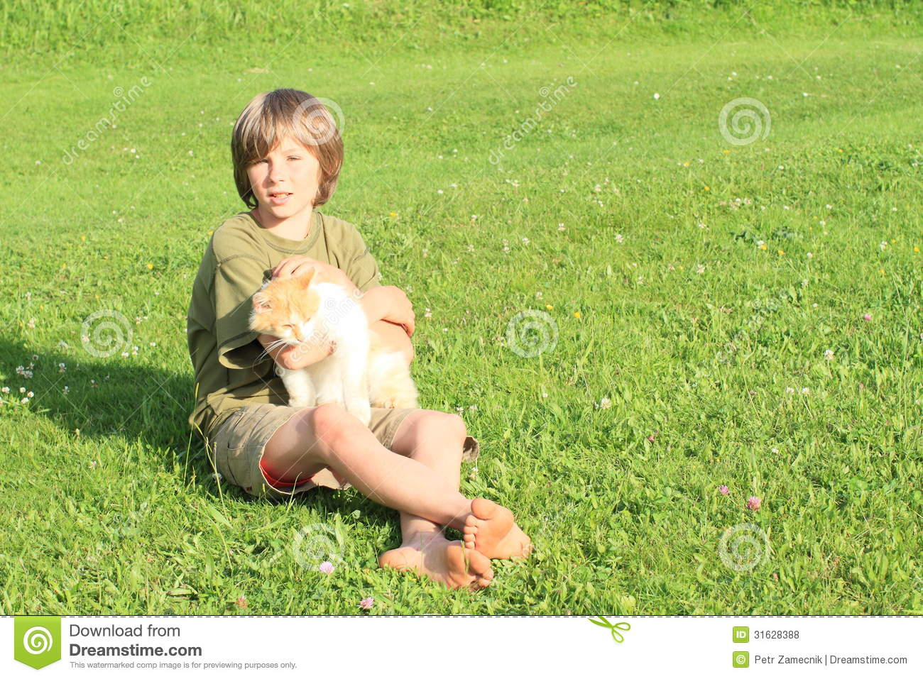 https://thumbs.dreamstime.com/z/little-boy-playing-cat-sitting-barefoot-orrange-white-meadow-31628388.jpg