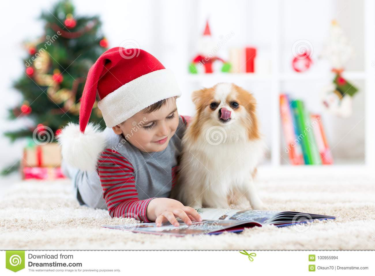 Little Boy Reading A Book And Dog At Christmas Stock Photo - Image ...