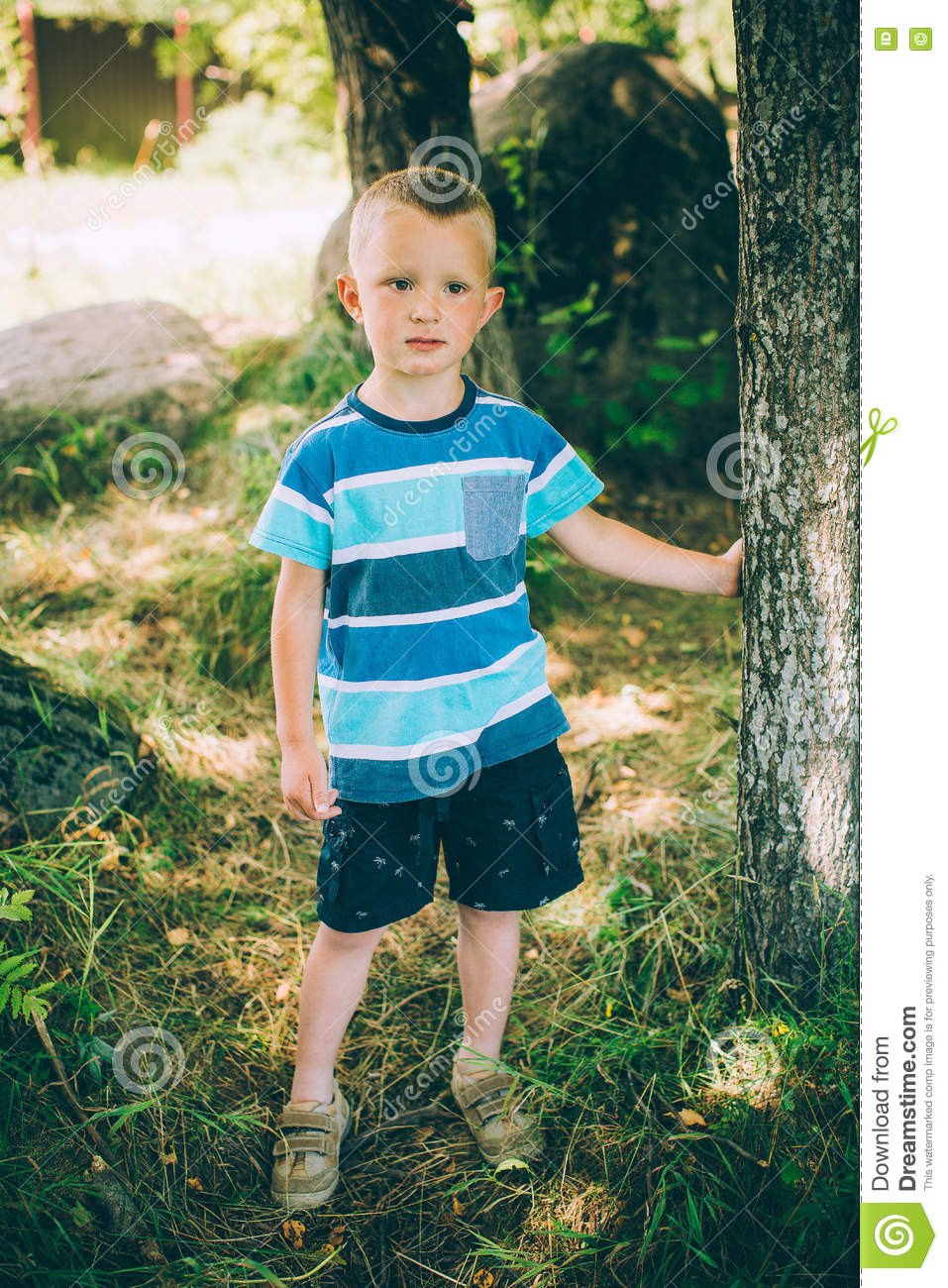 the little boy in shorts and a tshirt stock photo image