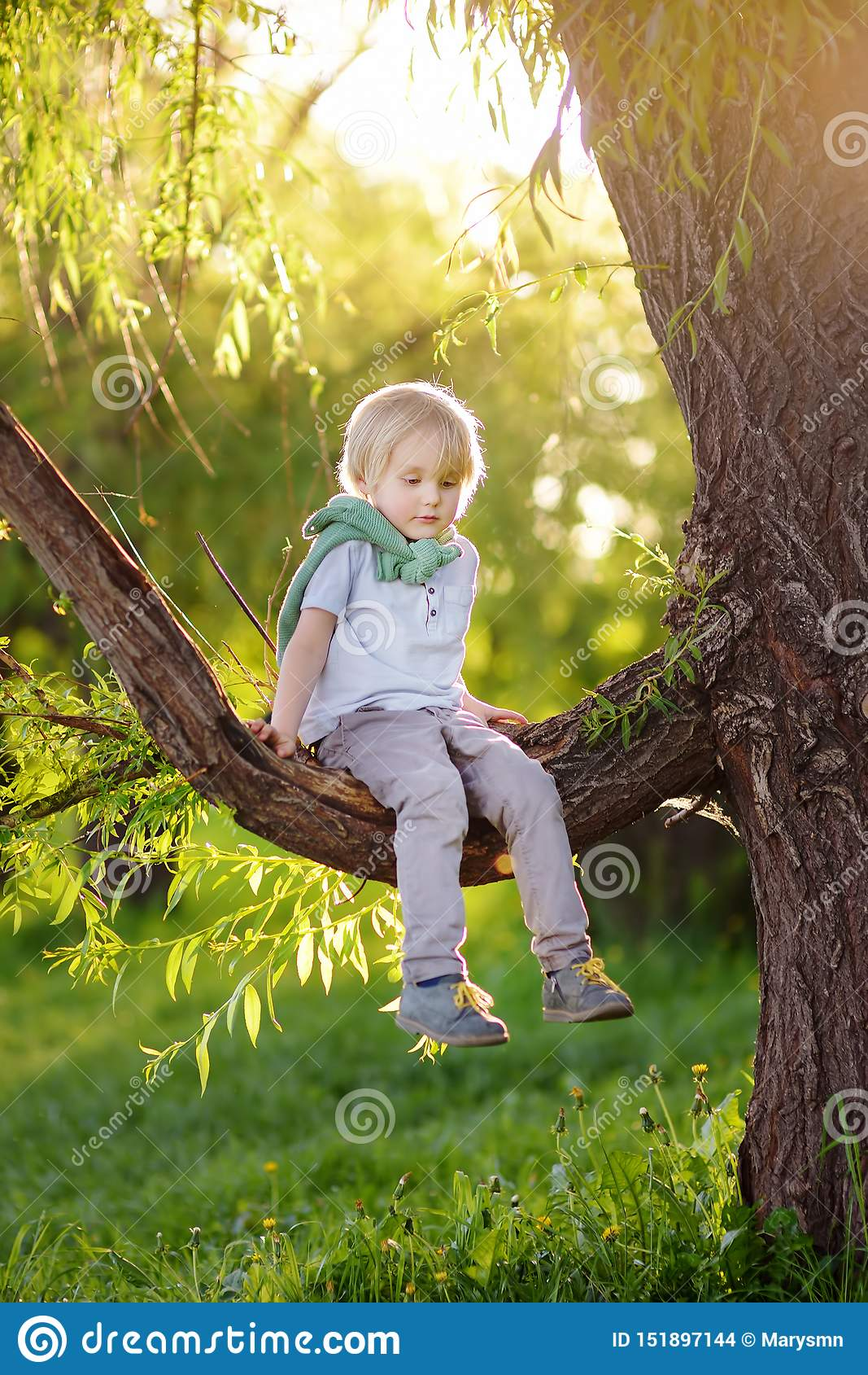 Little boy is sitting on a branch of big tree and is dreaming. Child`s games. Active family time on nature