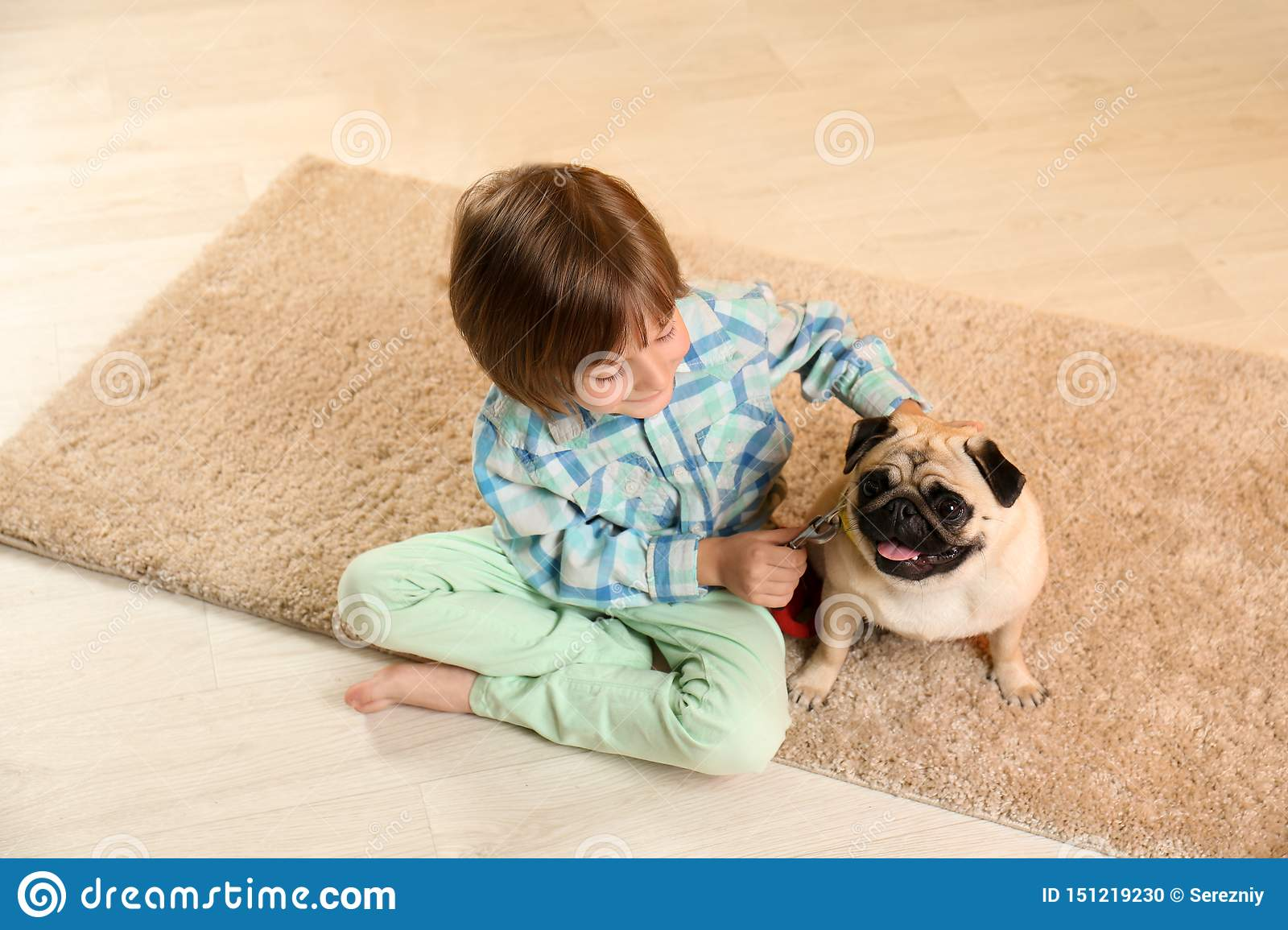 Little boy sitting with cute pug dog on floor at home