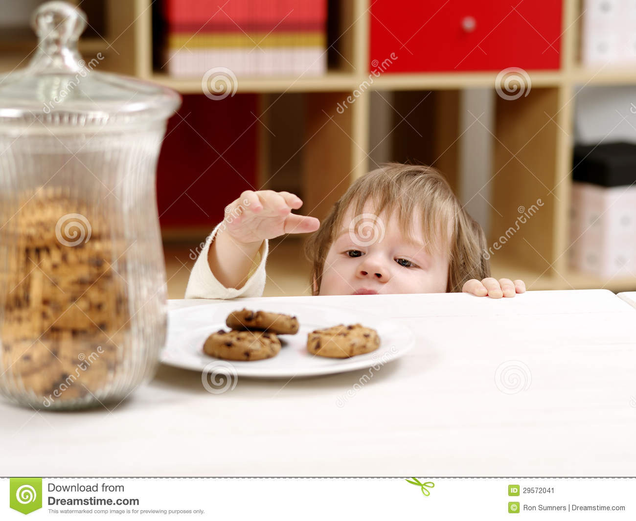 Little Boy Stealing Cookies Stock Image Image 29572041