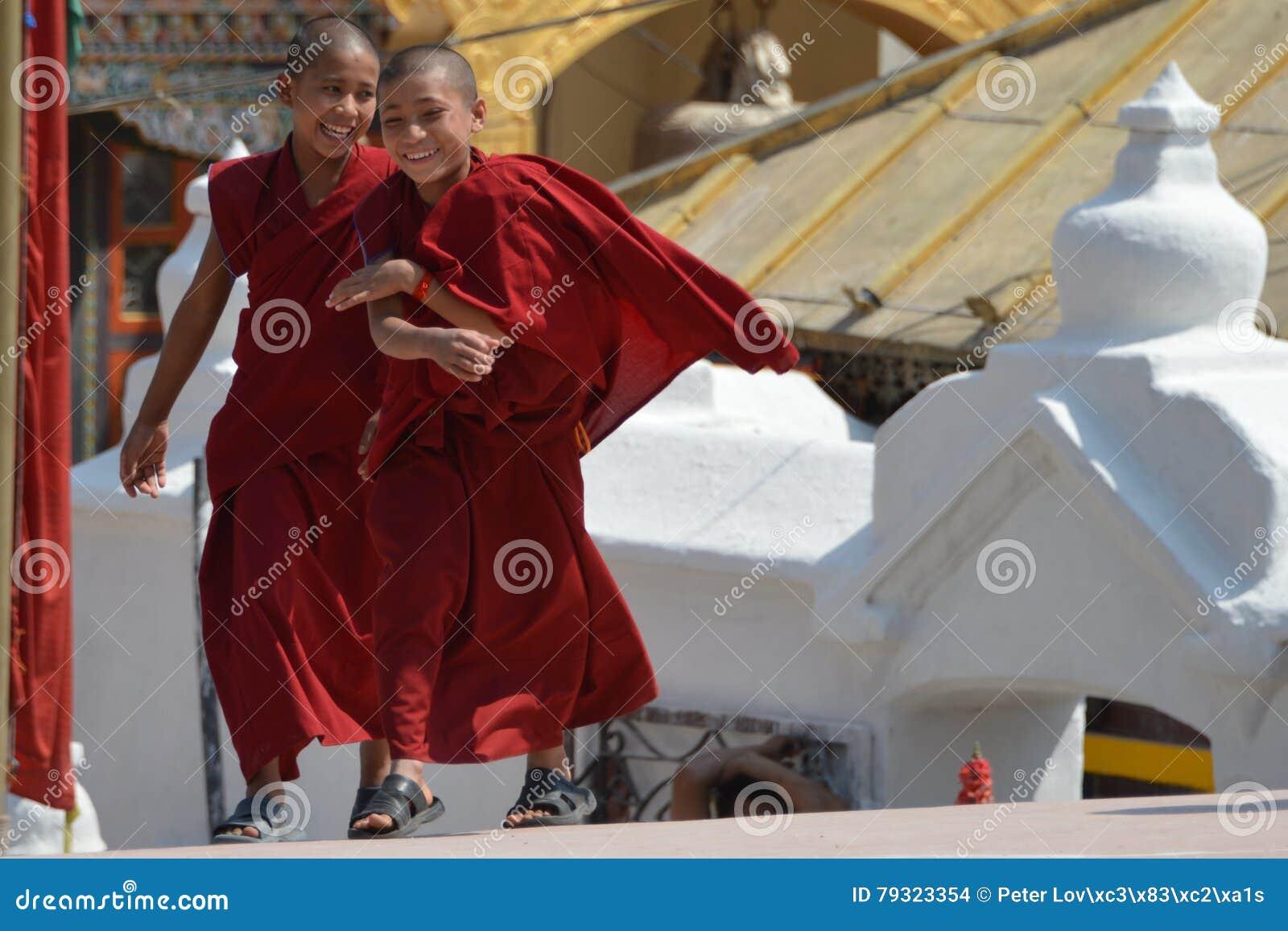 Little buddhist monks