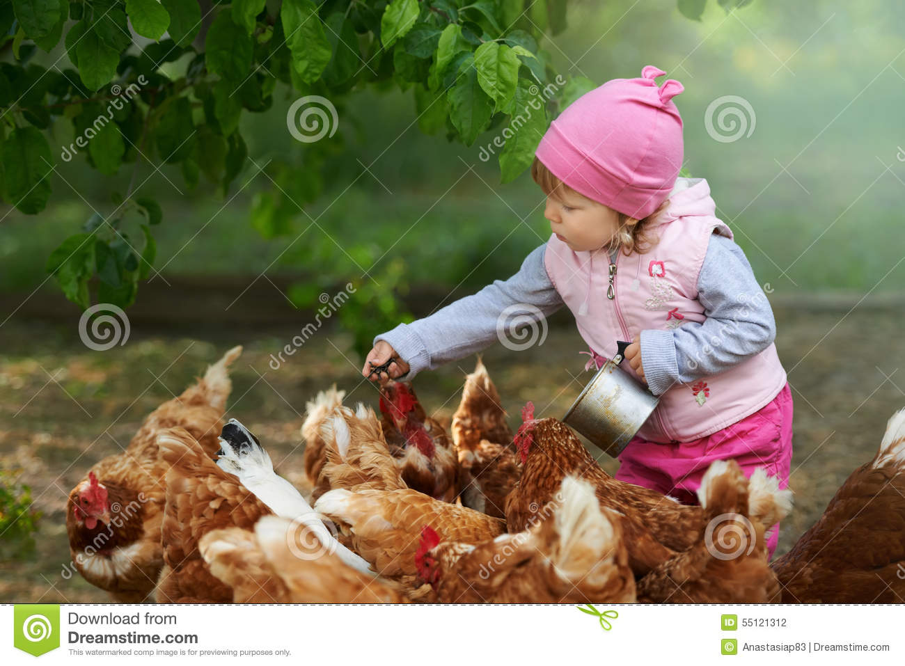 Little child enjoying feeding chicken