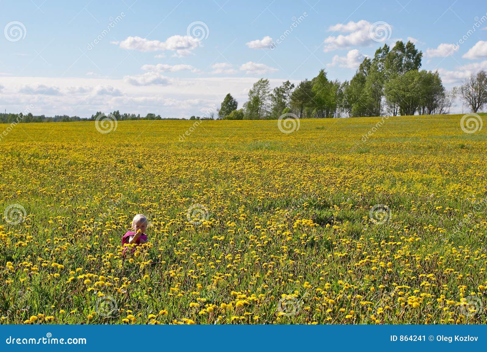 Little child among flowers