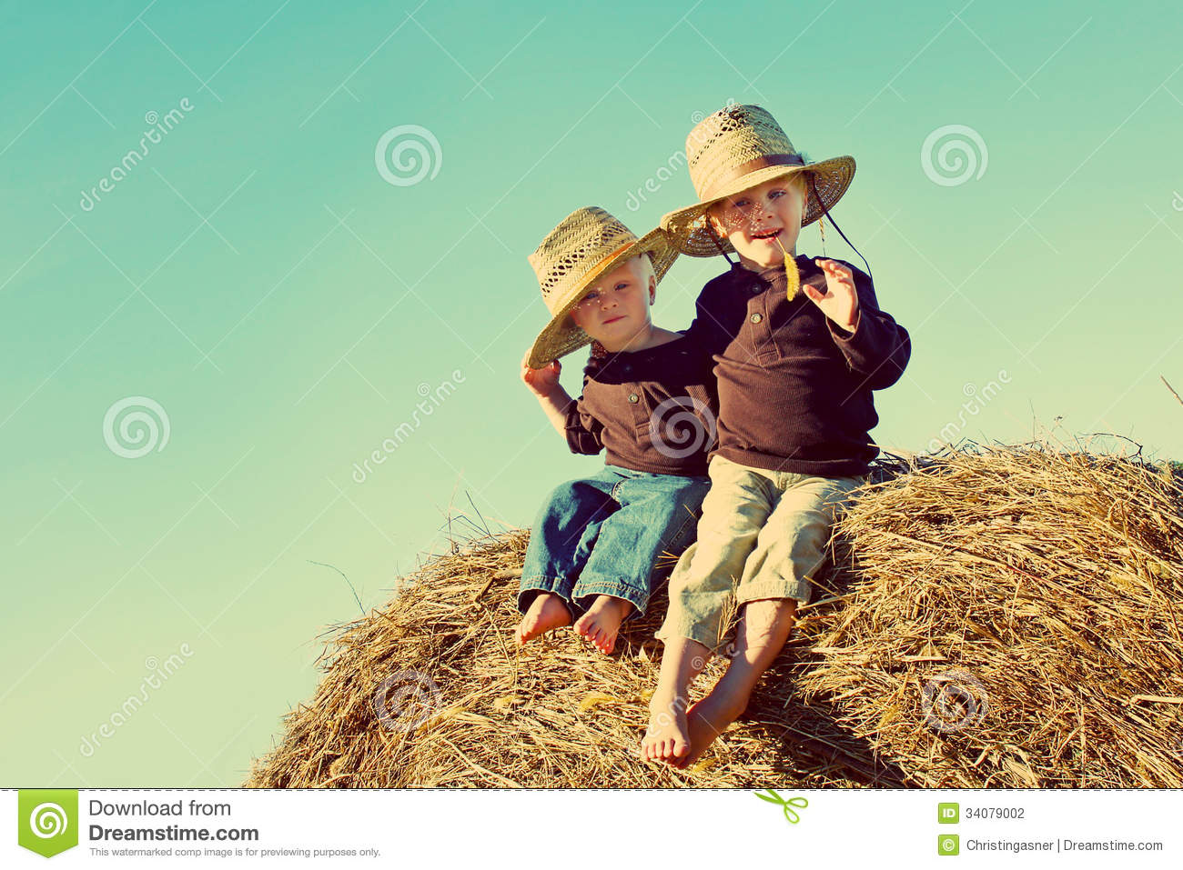 Little Country Boys On Farm Stock Photography Image