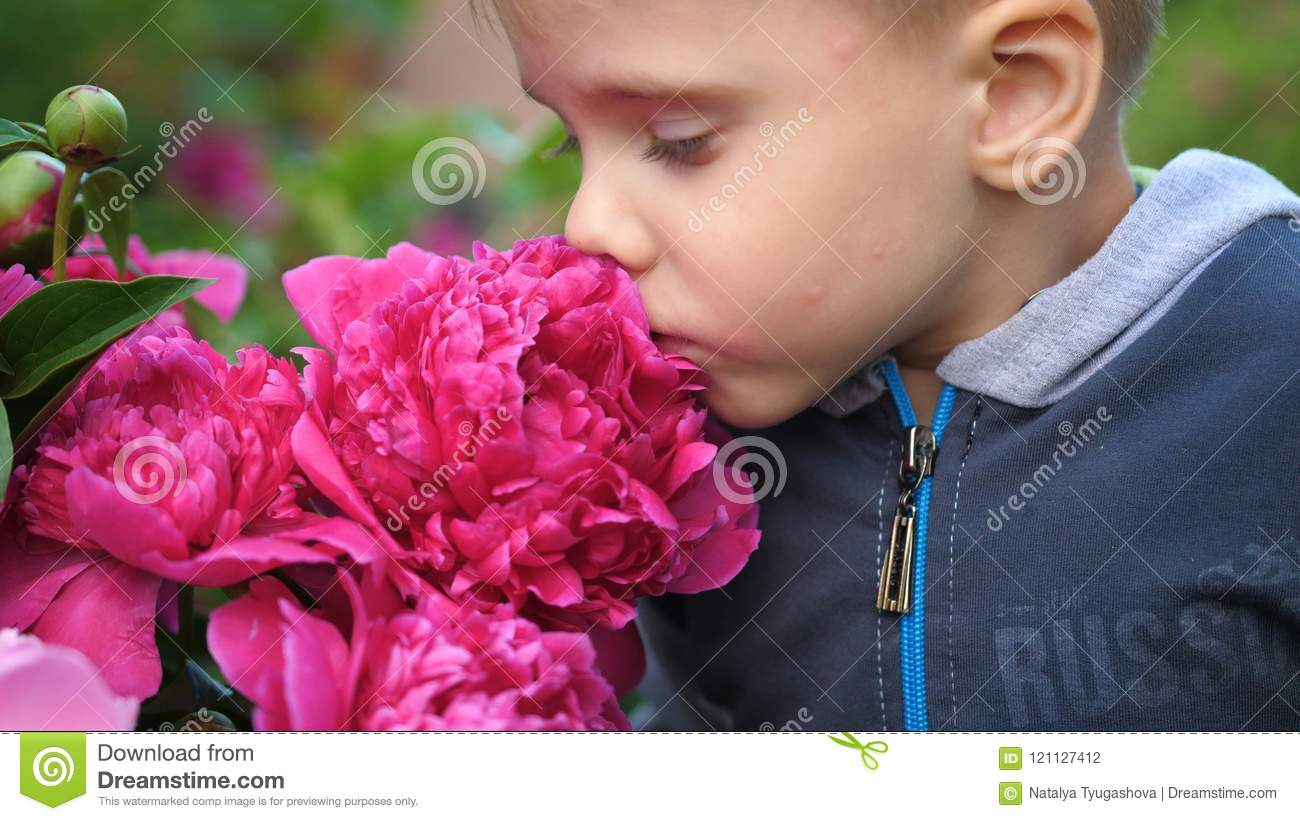 A little cute baby gently enjoys the smell of flowers. The child picks up a flower and inhales its fragrance. Blossoming