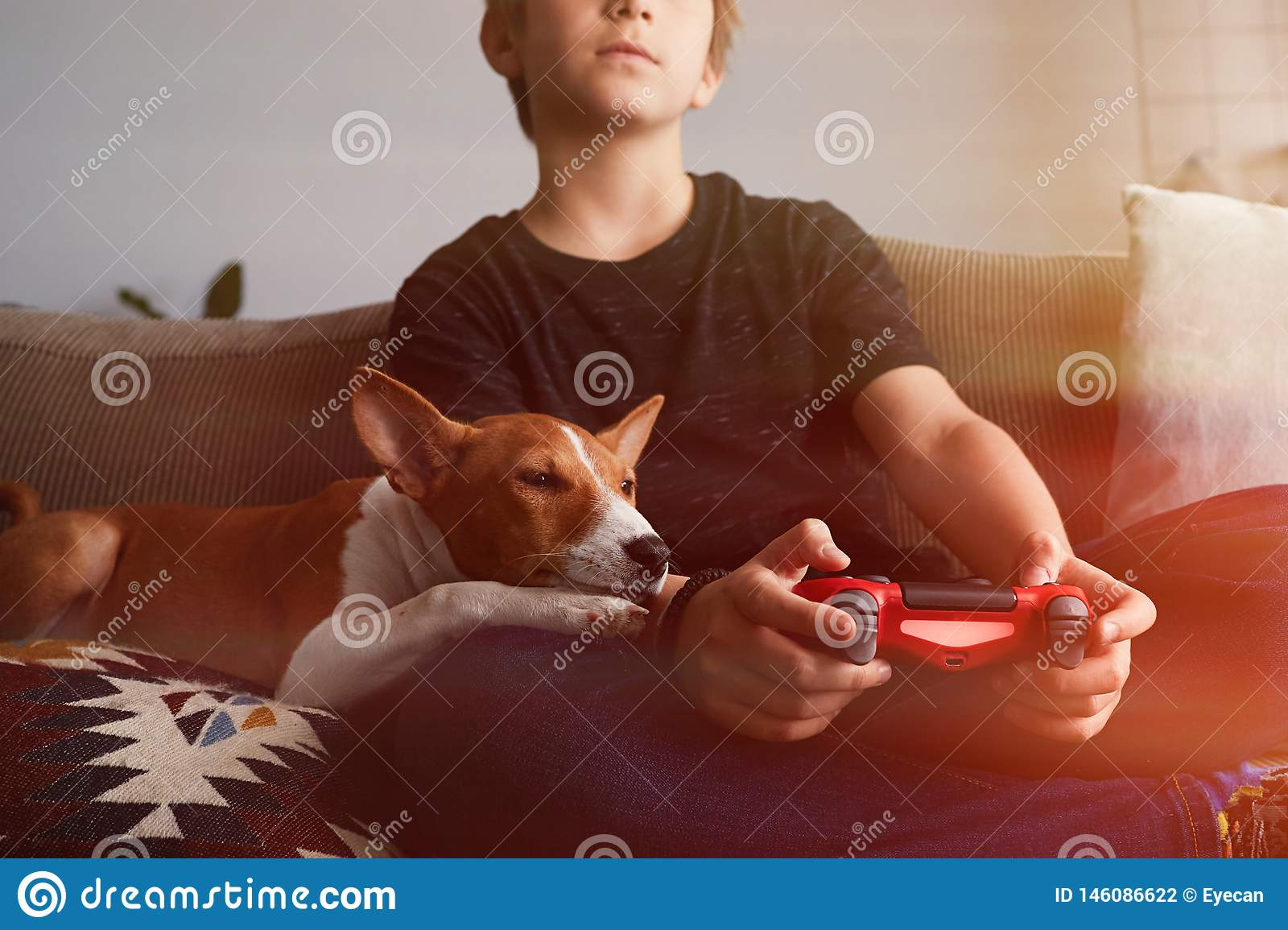 Little Cute Boy Playing Video Game Console Seated On A Sofa With Basenji Dog Puppy Close In Living Room At Home Stock Photo Image Of Controller Play 146086622