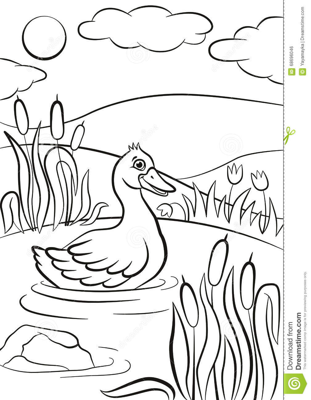 Coloring Pages Ducks In A Pond