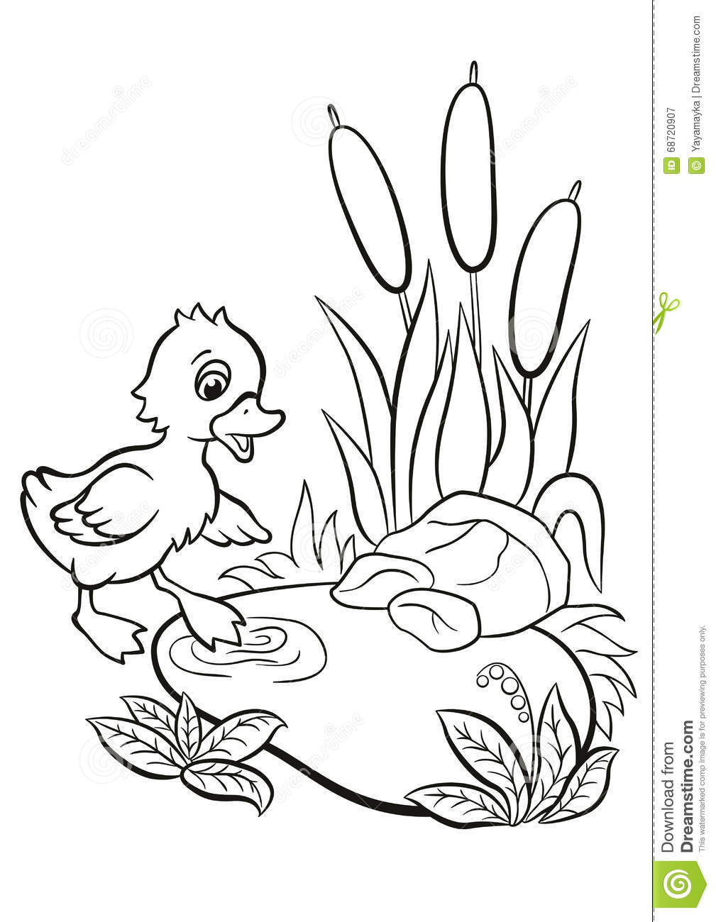 little cute duckling tries to go to the pond stock vector image