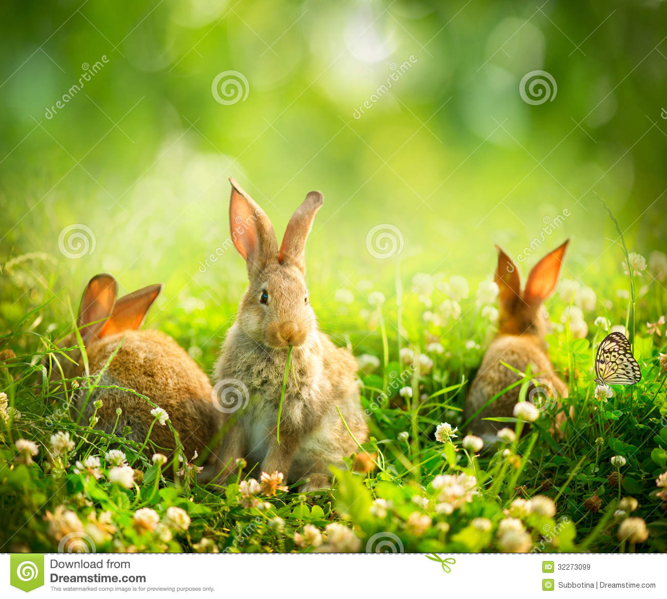 Little Easter Bunnies Royalty Free Stock Images Image