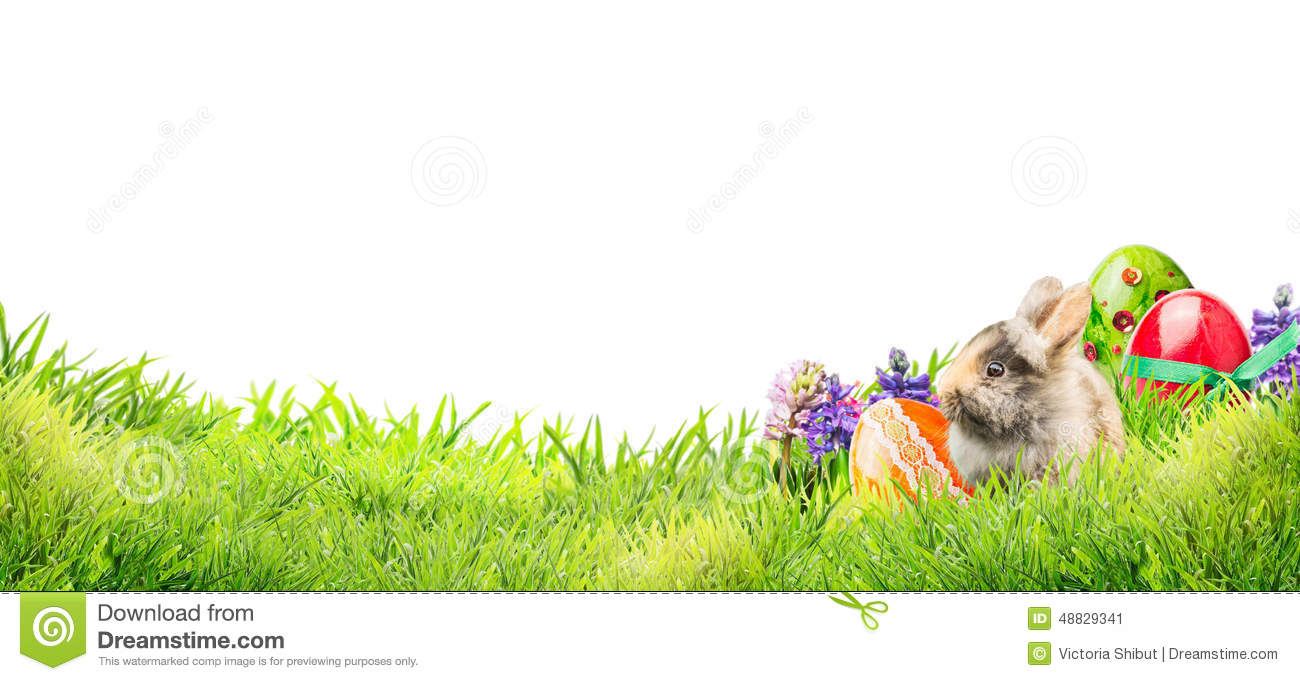 Little Easter Bunny With Eggs And Flowers In Garden Grass
