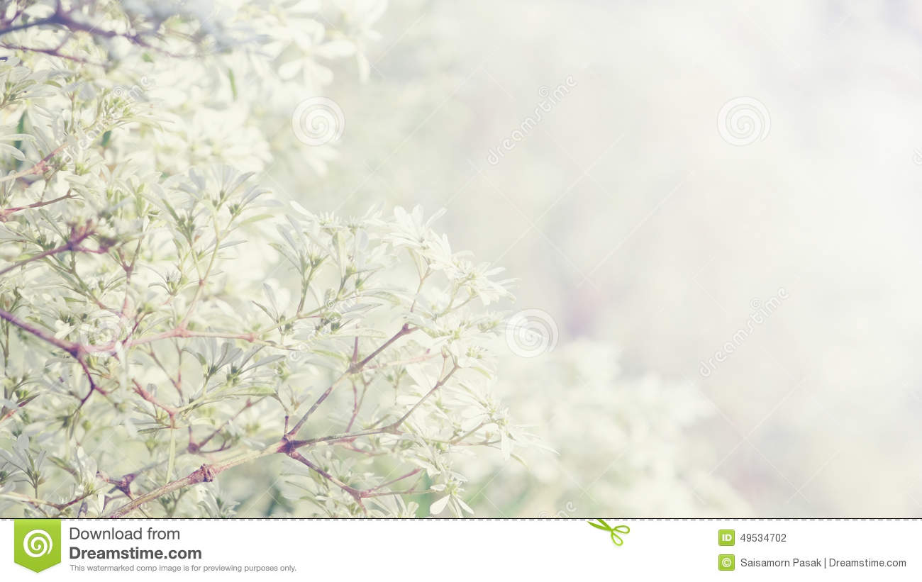 Little Flowers With Sunny Vintage Floral Background Stock Photo