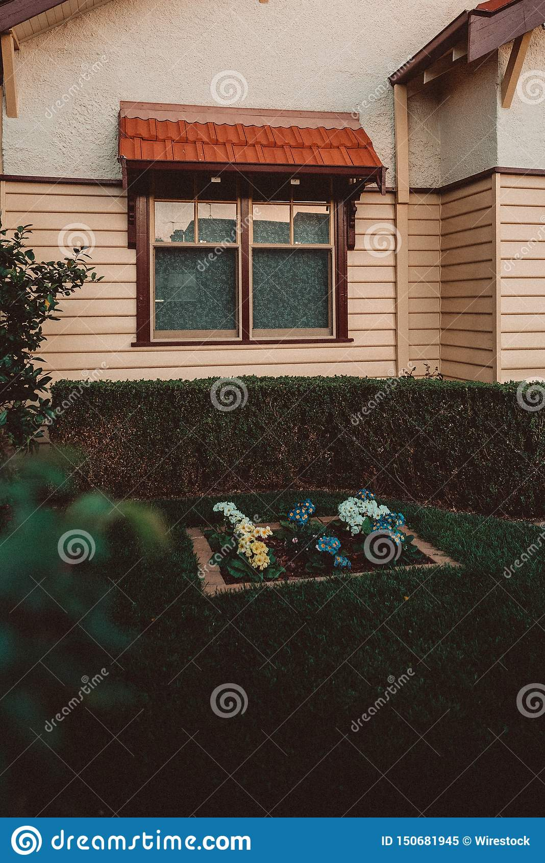 Little garden of a house with plants and flowers