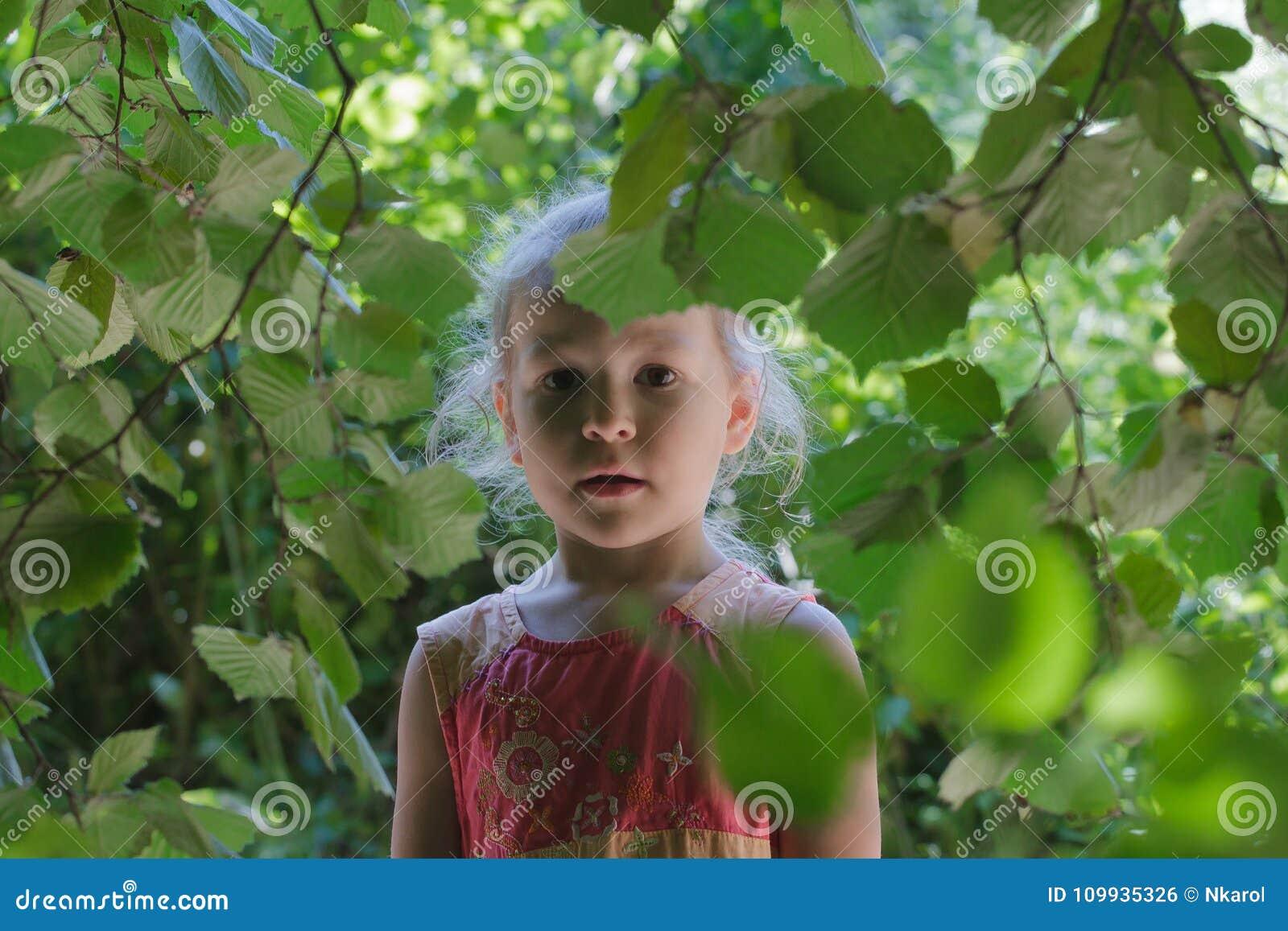 Little girl adventure in common hazel shrubbery hedgerow