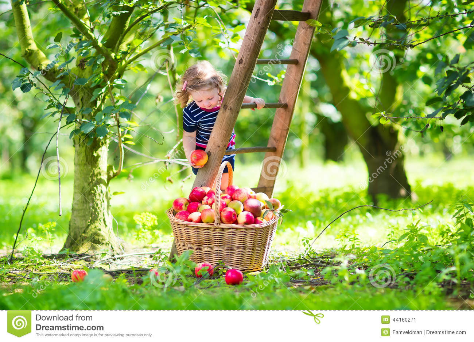 Little Girl In An Apple Garden Stock Image