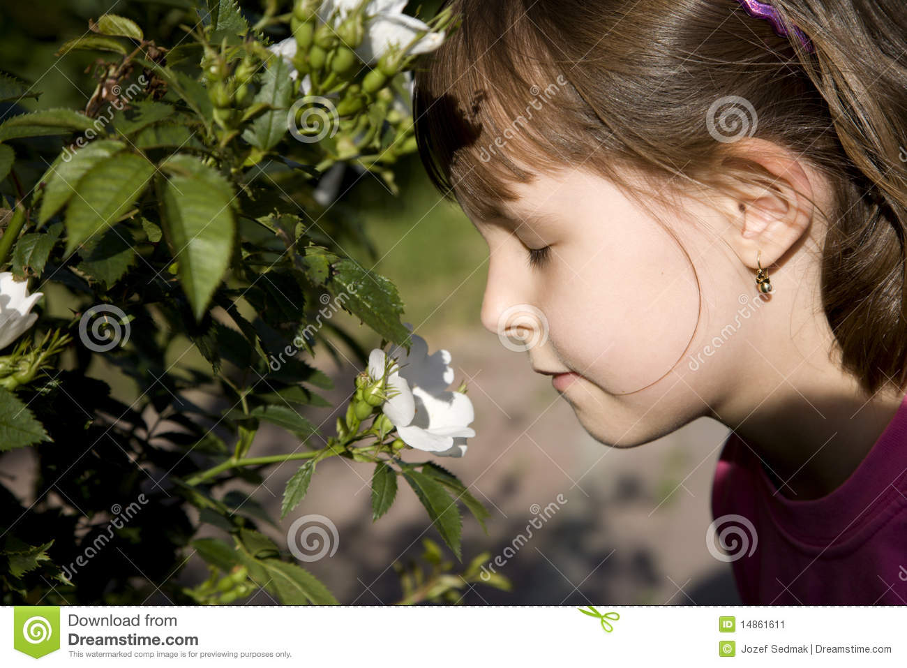 Little girl and aroma of the rose
