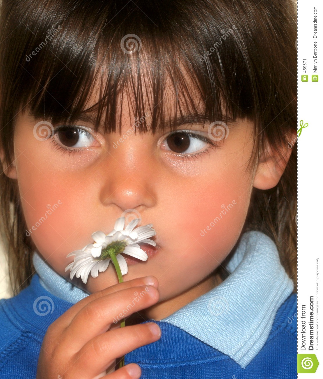 Download Little Girl and a Daisy stock image. Image of adorable - 459671