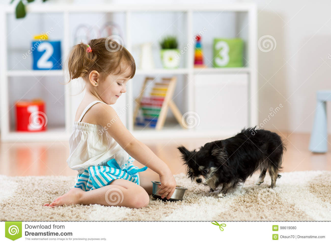 Little girl feeds Chihuahua dog in children room. Kids pet friendship