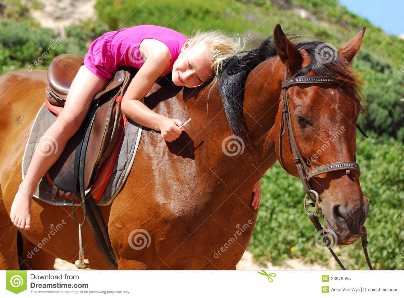 Download Little girl on her pony stock image. Image of animal - 23979955