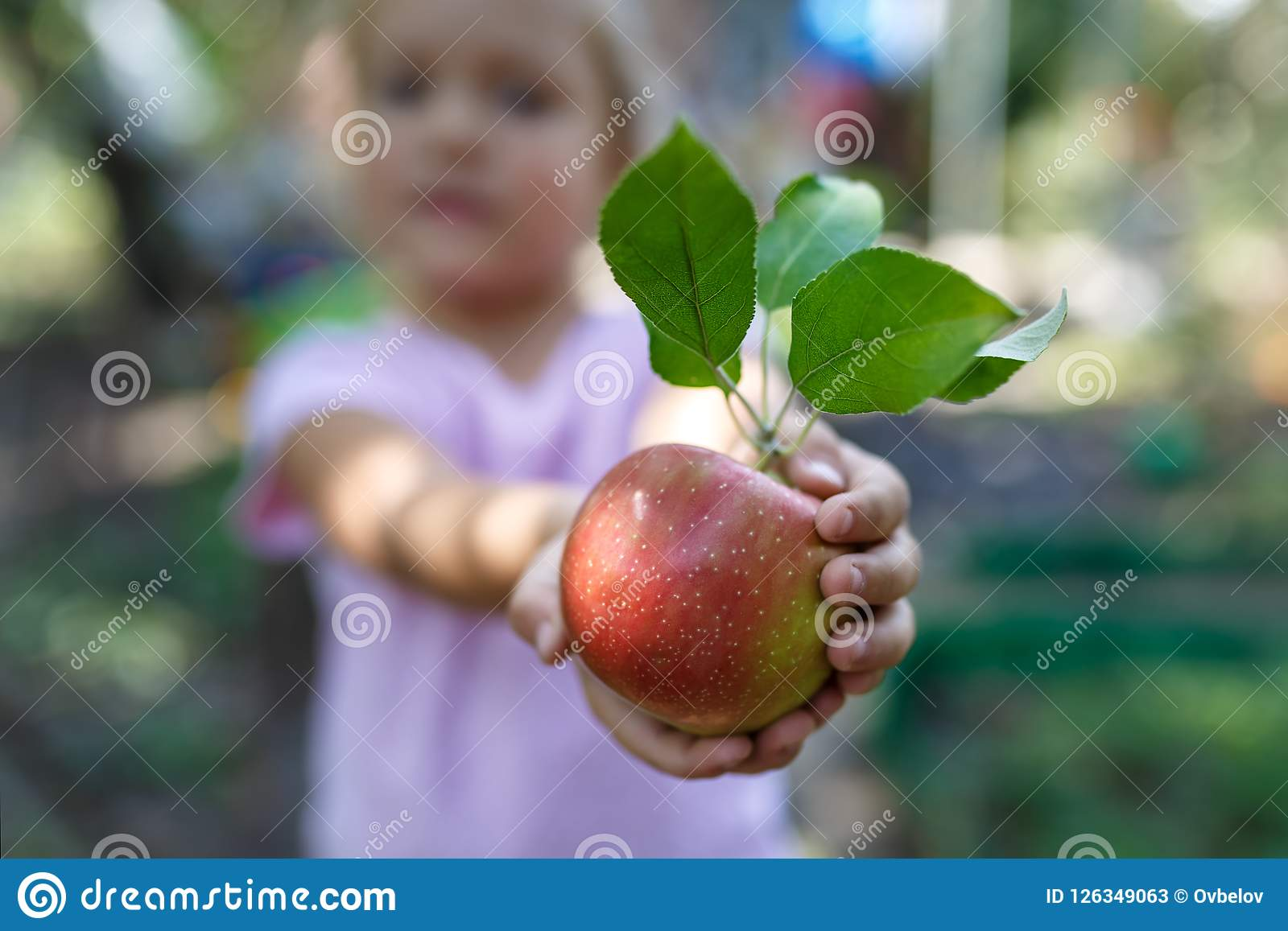 Little girl is holding the beautiful ripe red apple with green leaves