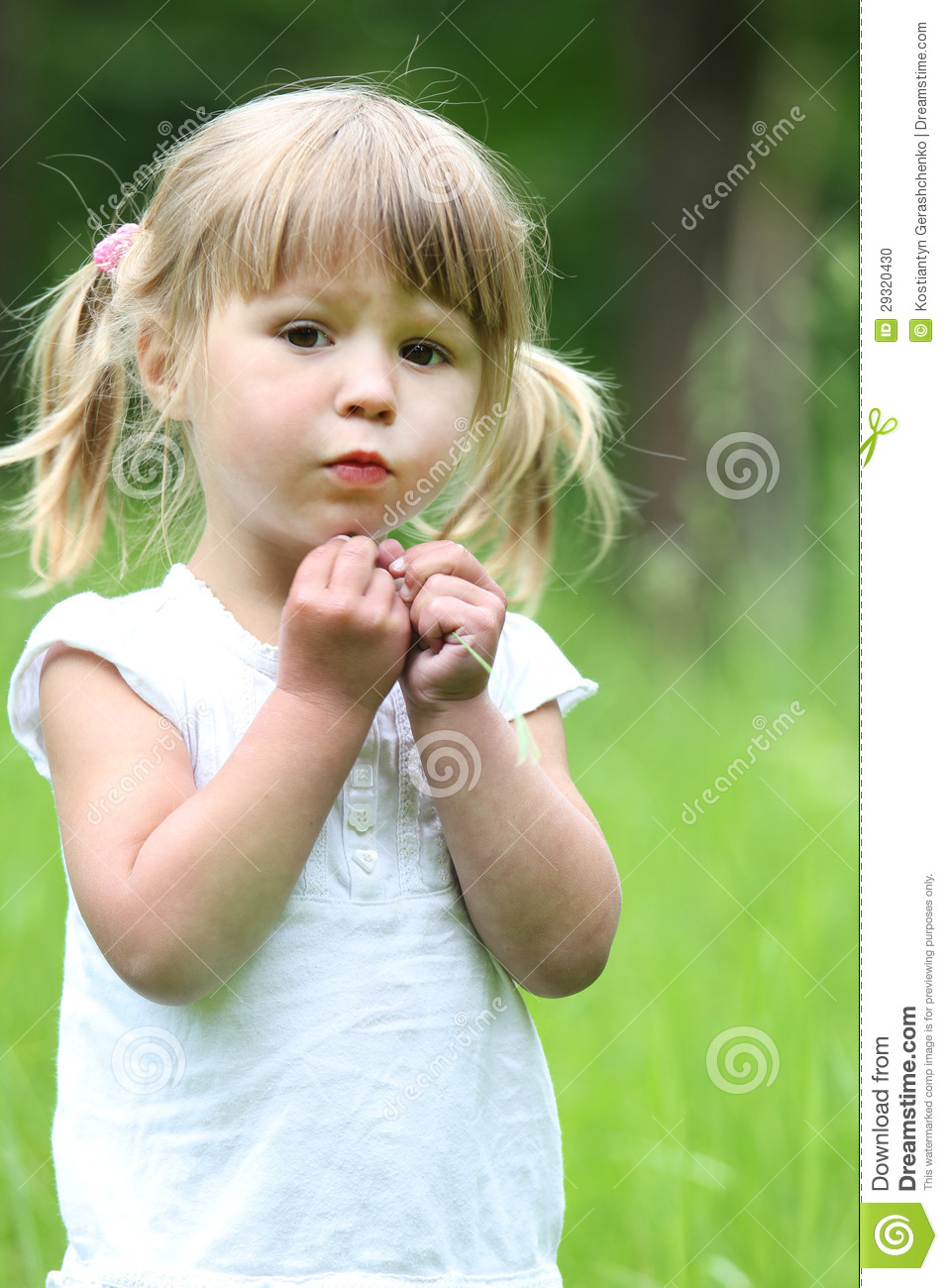 Little Girl On Nature Stock Photo Image 29320430
