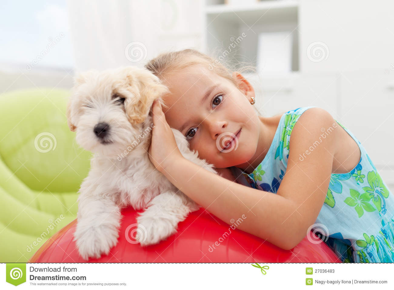 Little girl playing with her small fluffy dog