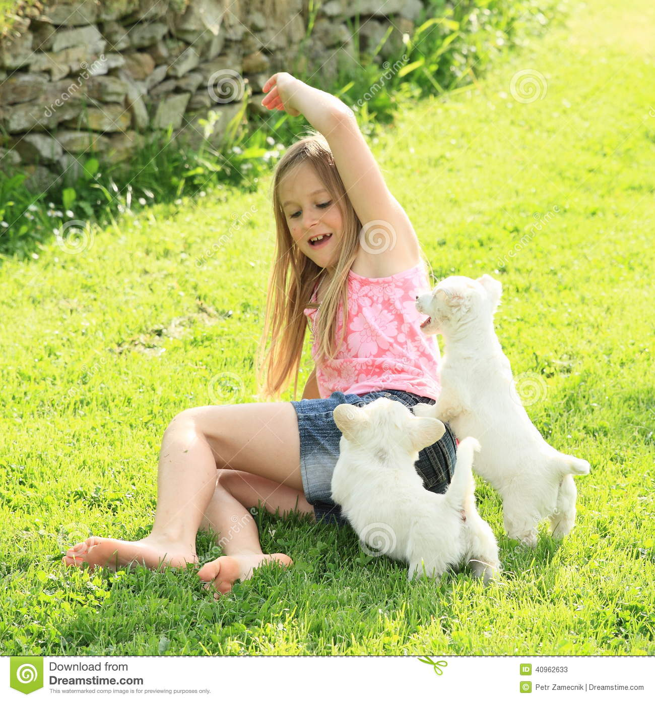 https://thumbs.dreamstime.com/z/little-girl-playing-two-puppies-pink-t-shirt-blue-shorts-bare-feet-white-green-meadow-40962633.jpg