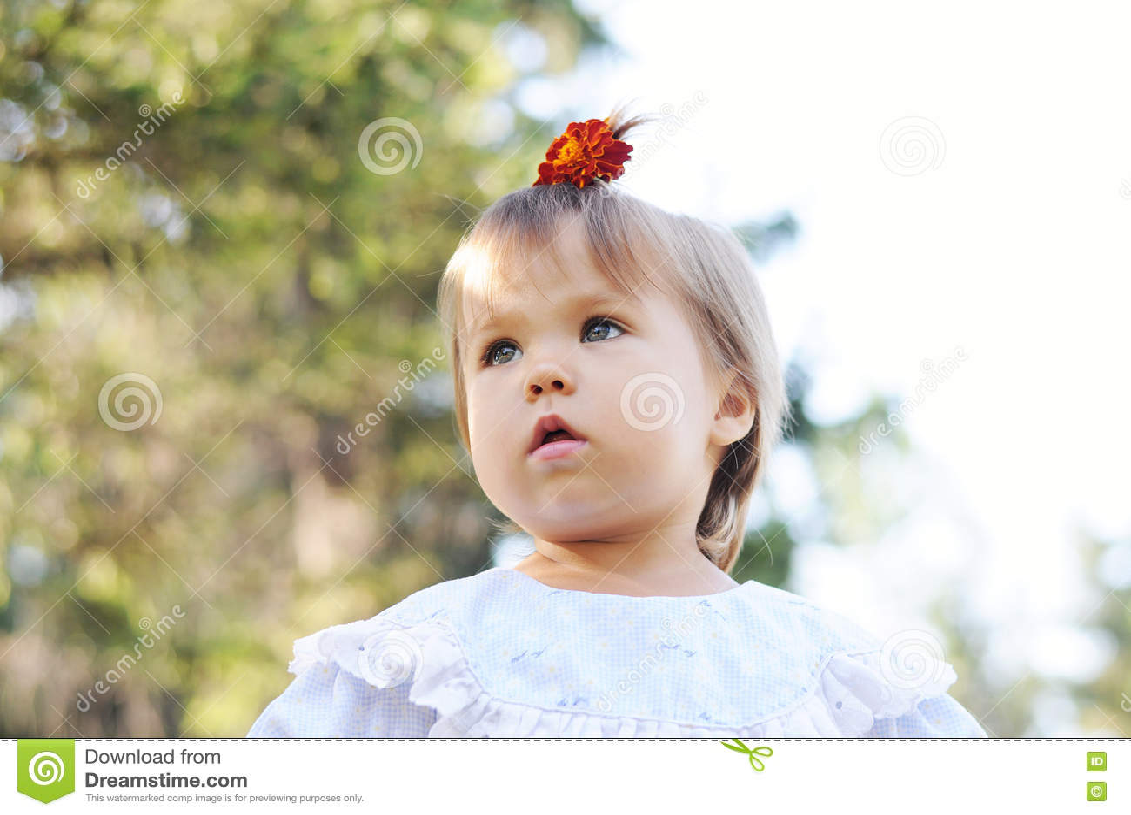 Amazing Little Girl With Ponytail Portrait Stock Photo Image Of Flower Schematic Wiring Diagrams Amerangerunnerswayorg