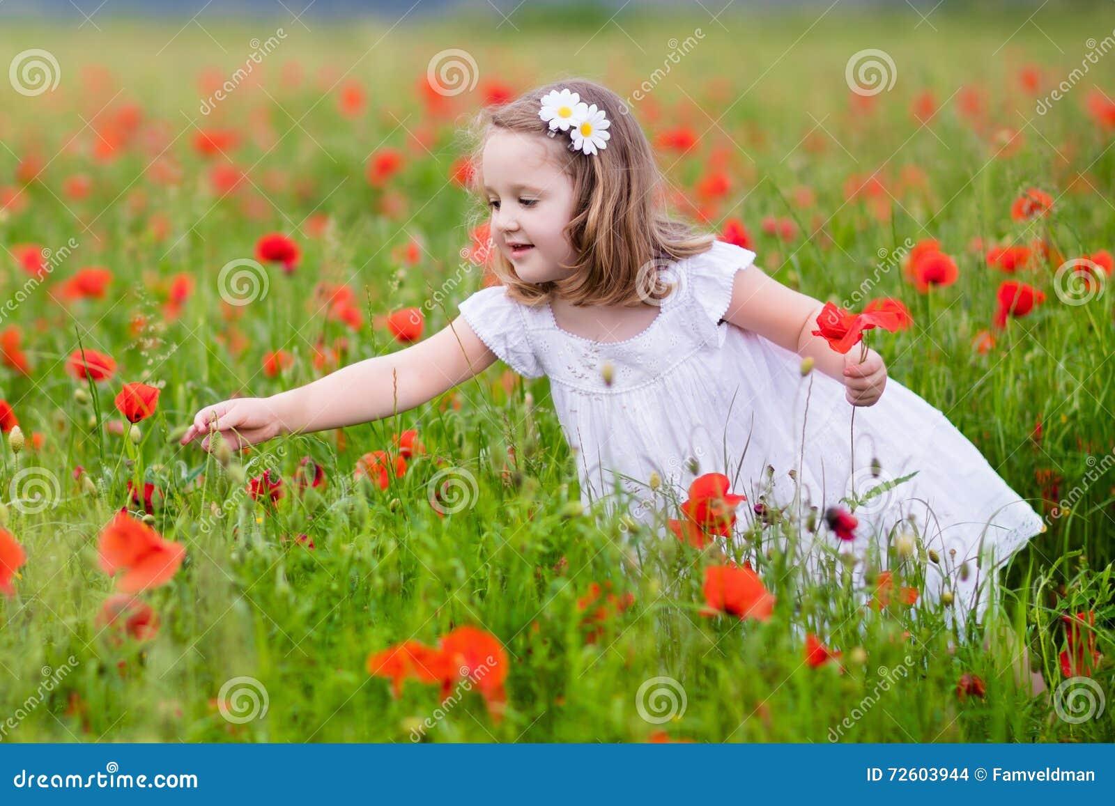 Little girl in poppy flower field stock photo image of agriculture download little girl in poppy flower field stock photo image of agriculture care mightylinksfo
