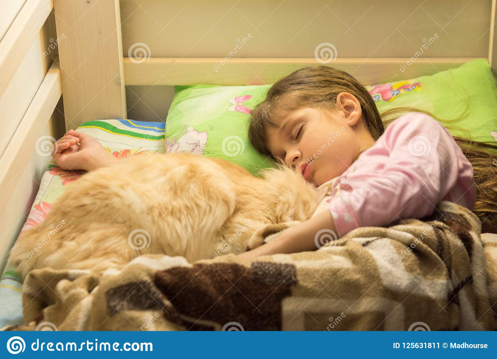 Little girl sleeping in bed with cat