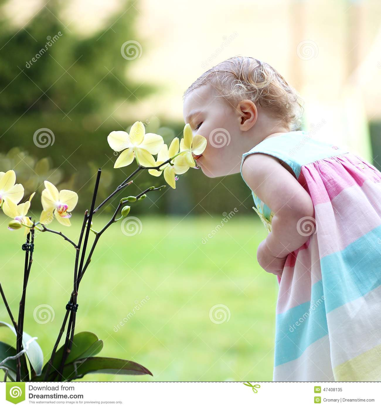 Little girl smelling beautiful flowers