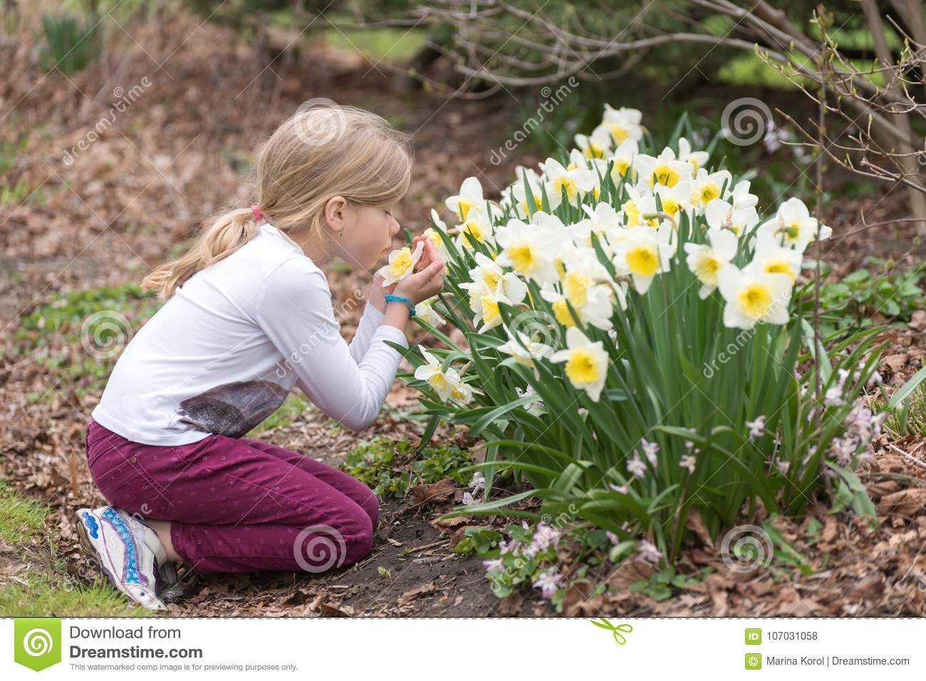 Little girl is sniffing narcissus flower in a park in spring
