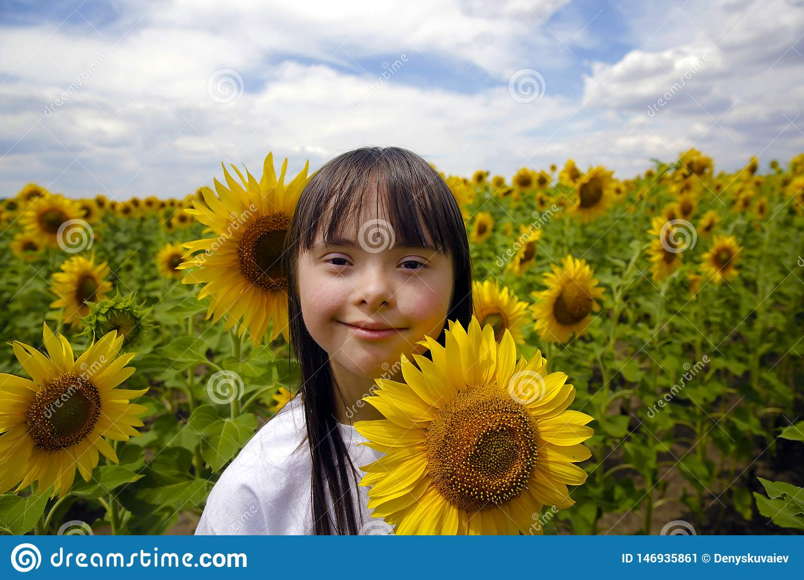 Little girl in sunflowers field.