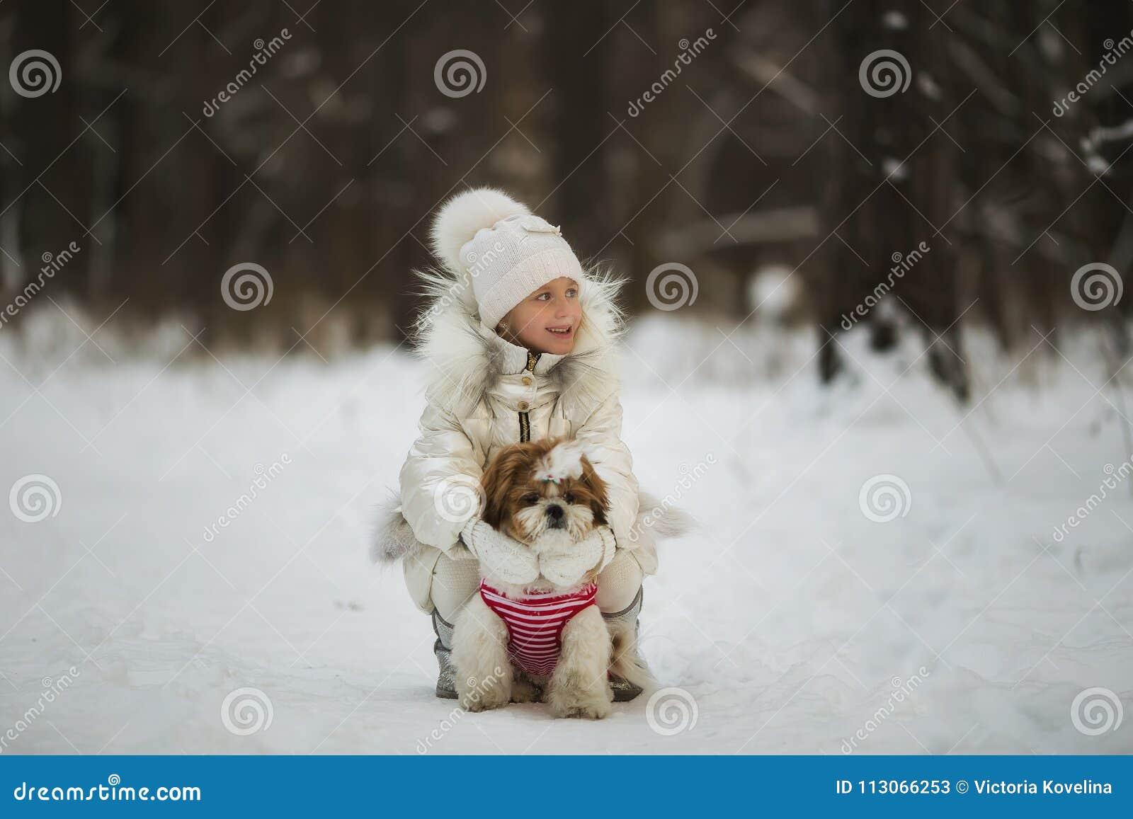 Little Girl Walks With Her Beloved Puppy Shih Tzu Stock Image