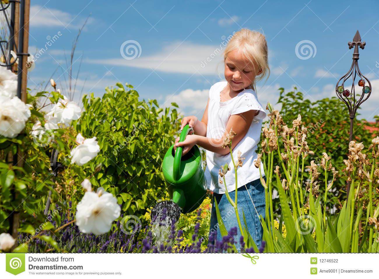 Little Girl Watering Flowers Stock Photography Image