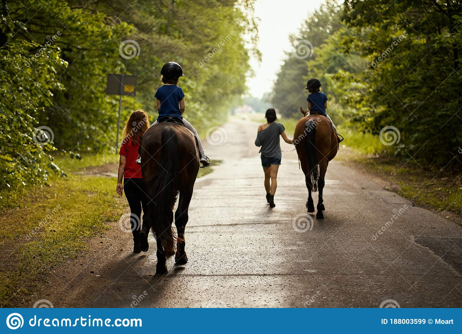 Little Girls Ride Beautiful Horses On The Road In The Forest In Summer Stock Image Image Of Horseback Forest 188003599
