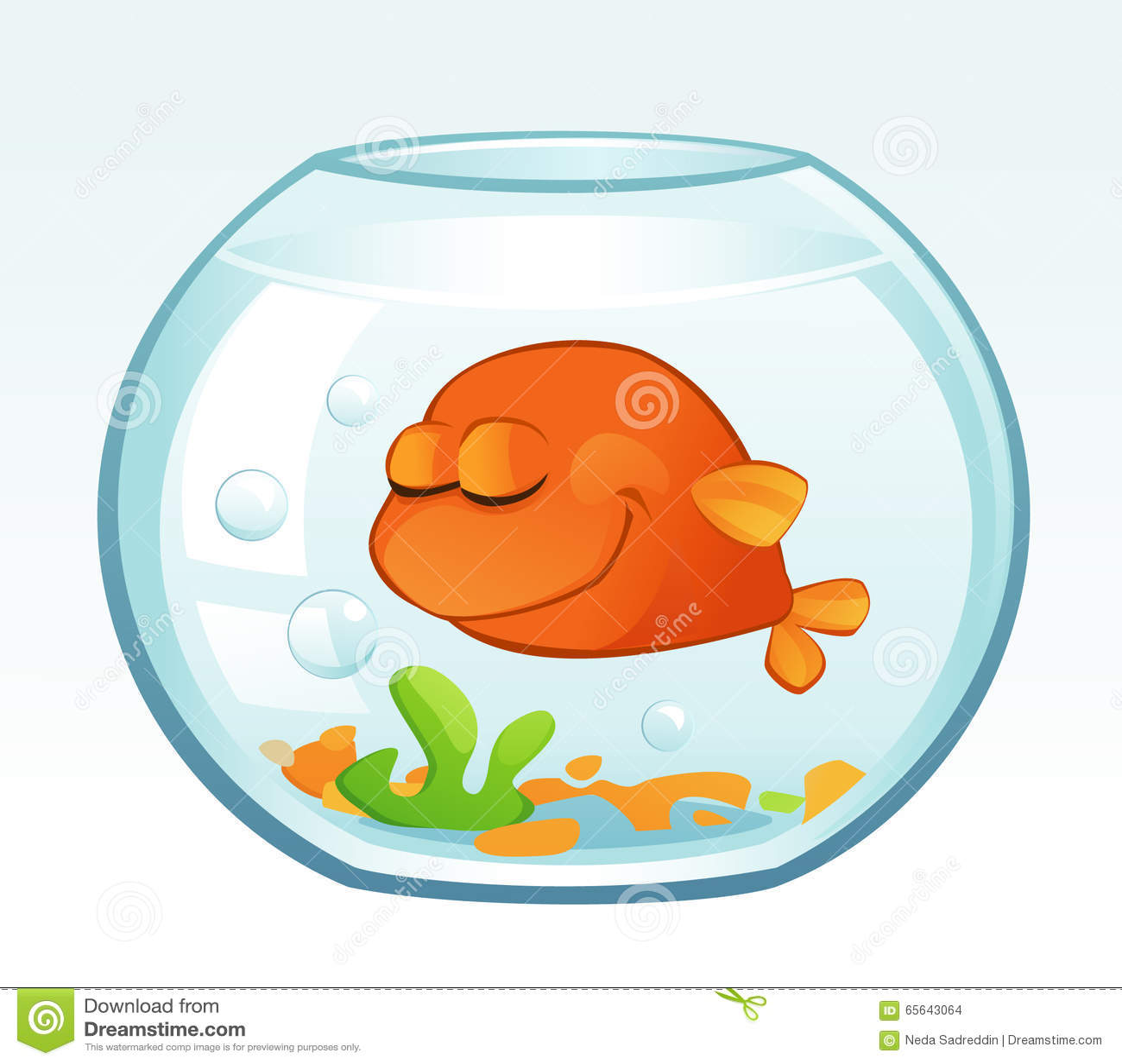 japon balığı uyur mu