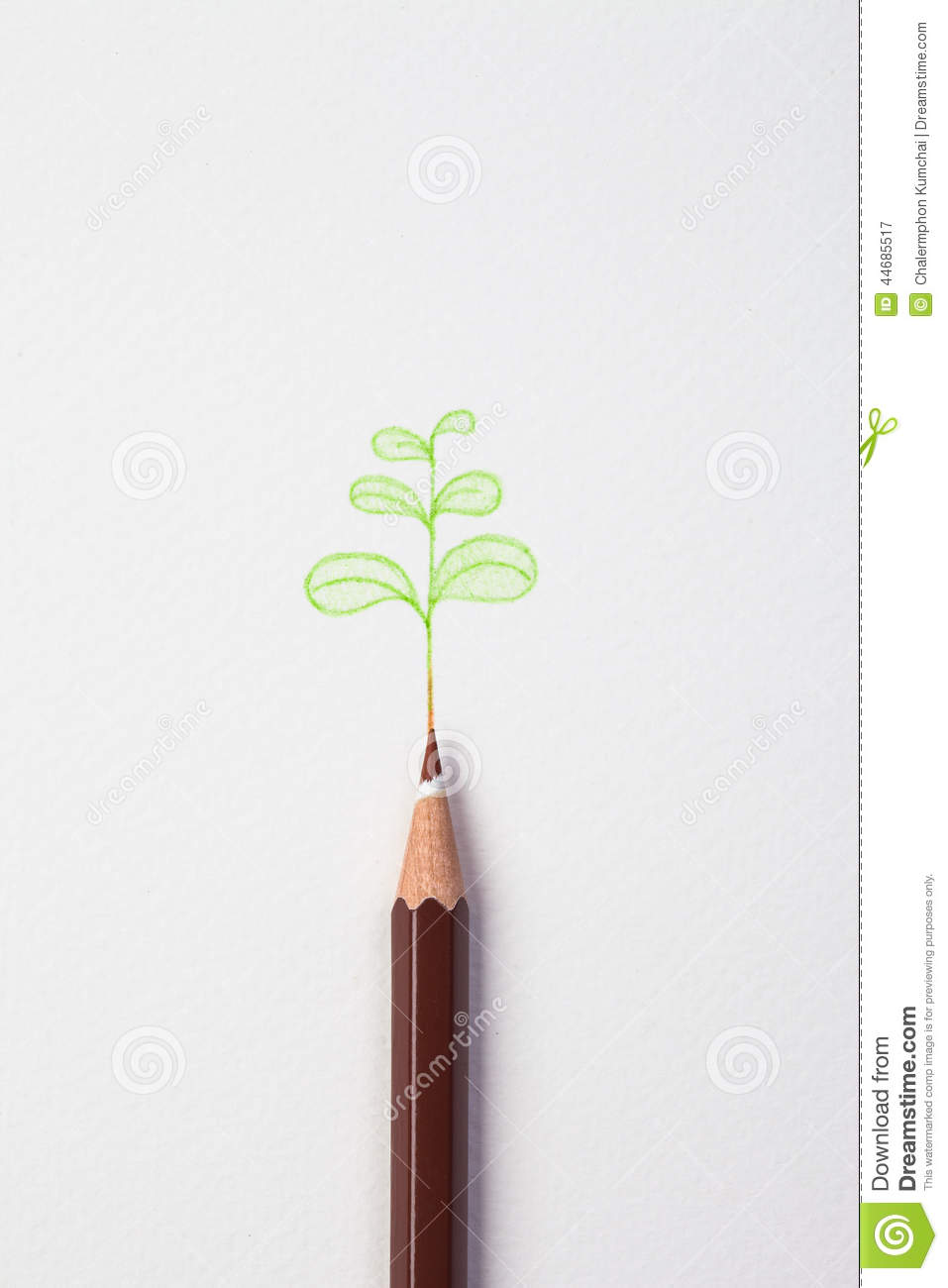 Little Green Treen By Color Pencil On Paper Stock ...