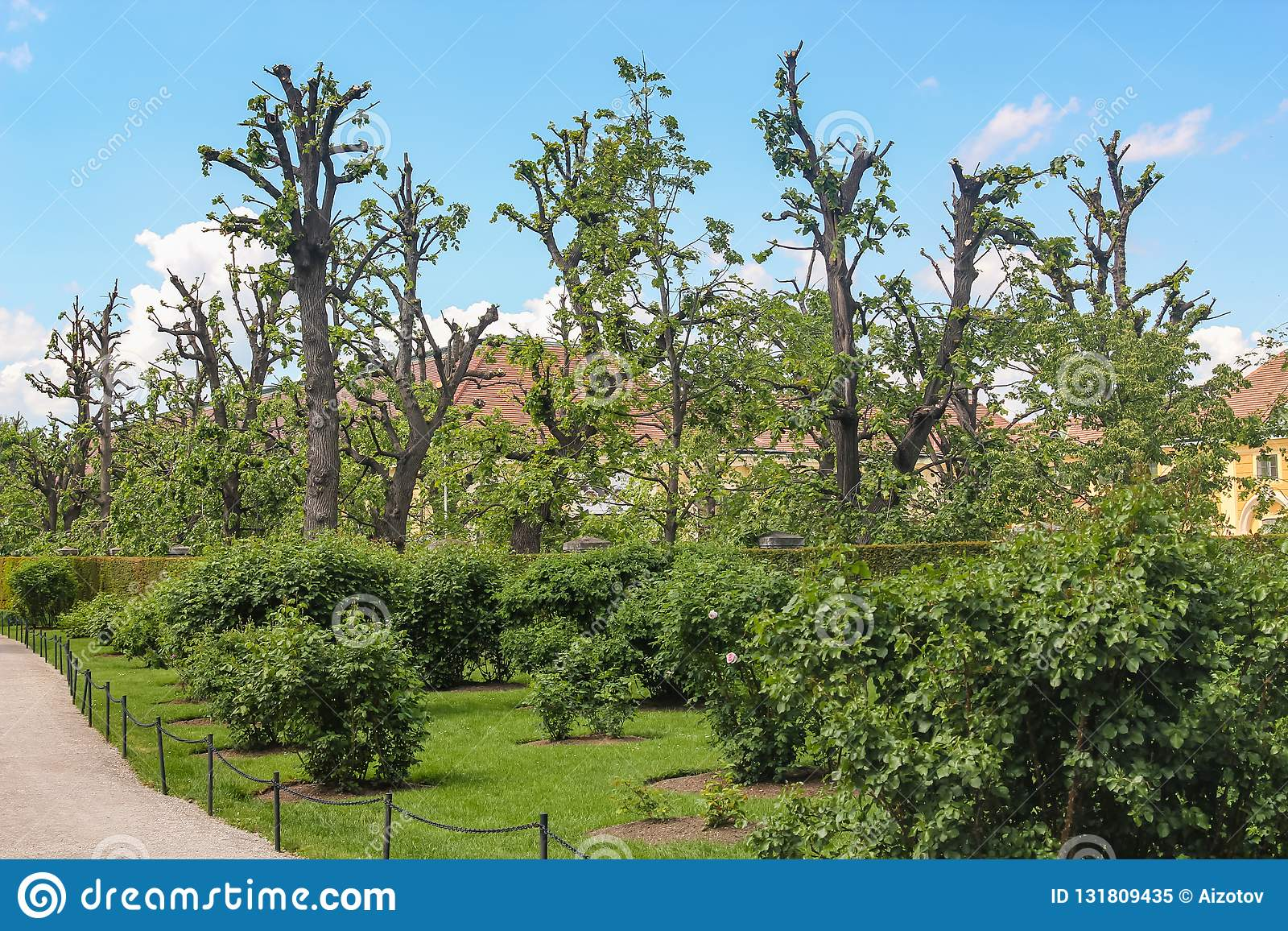 Little house in the garden with trimmed apple trees near Vienna Austria
