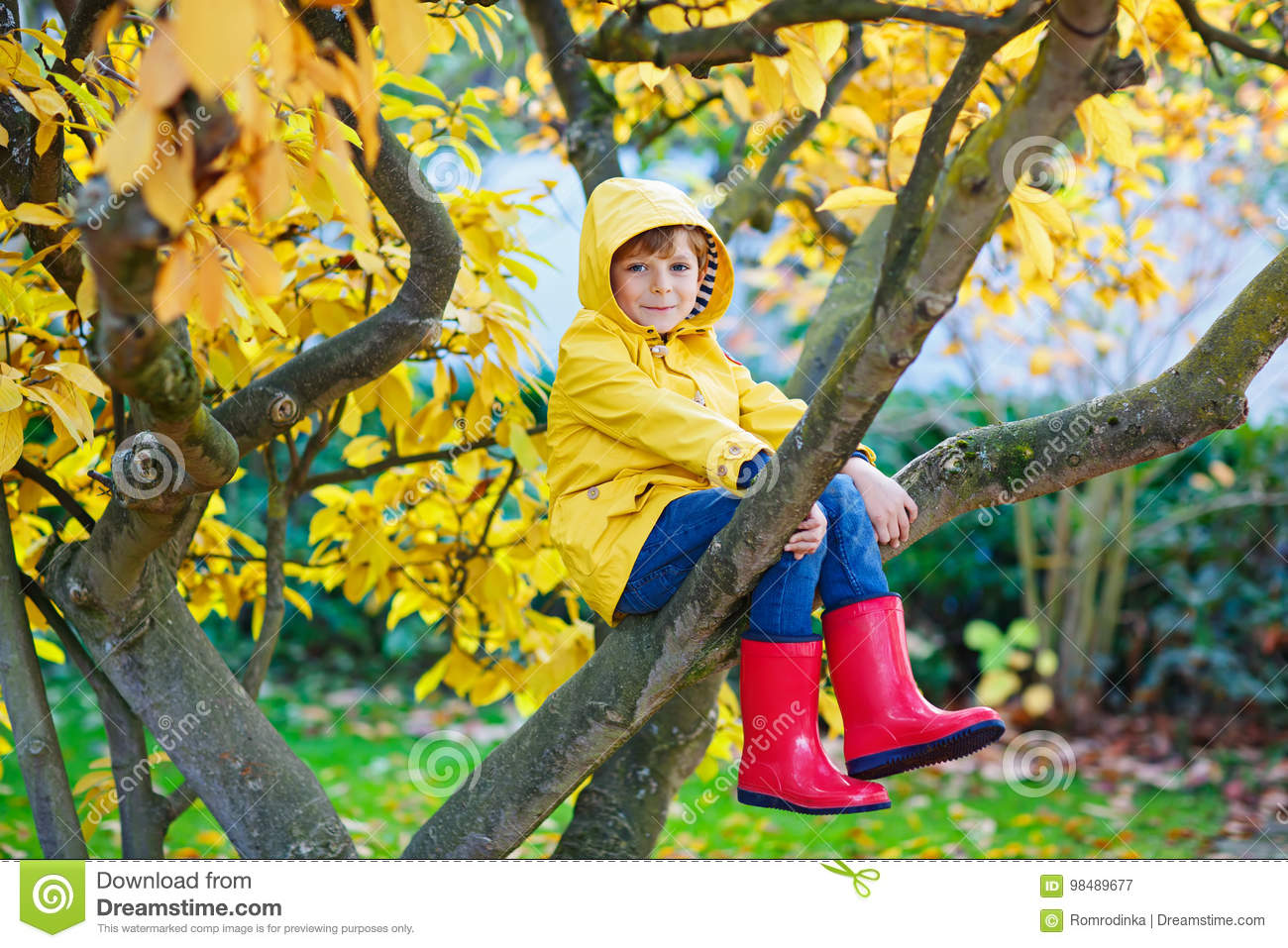 Little kid boy in colorful clothes enjoying climbing on tree on
