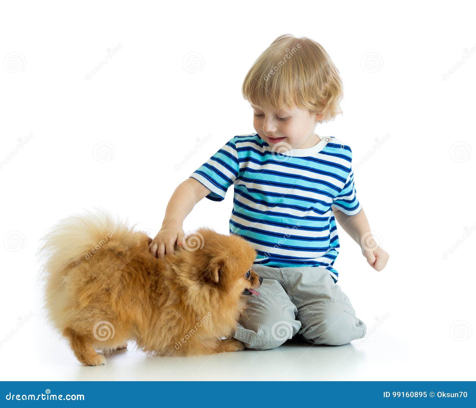 Little boy with dog spitz, isolated on white background