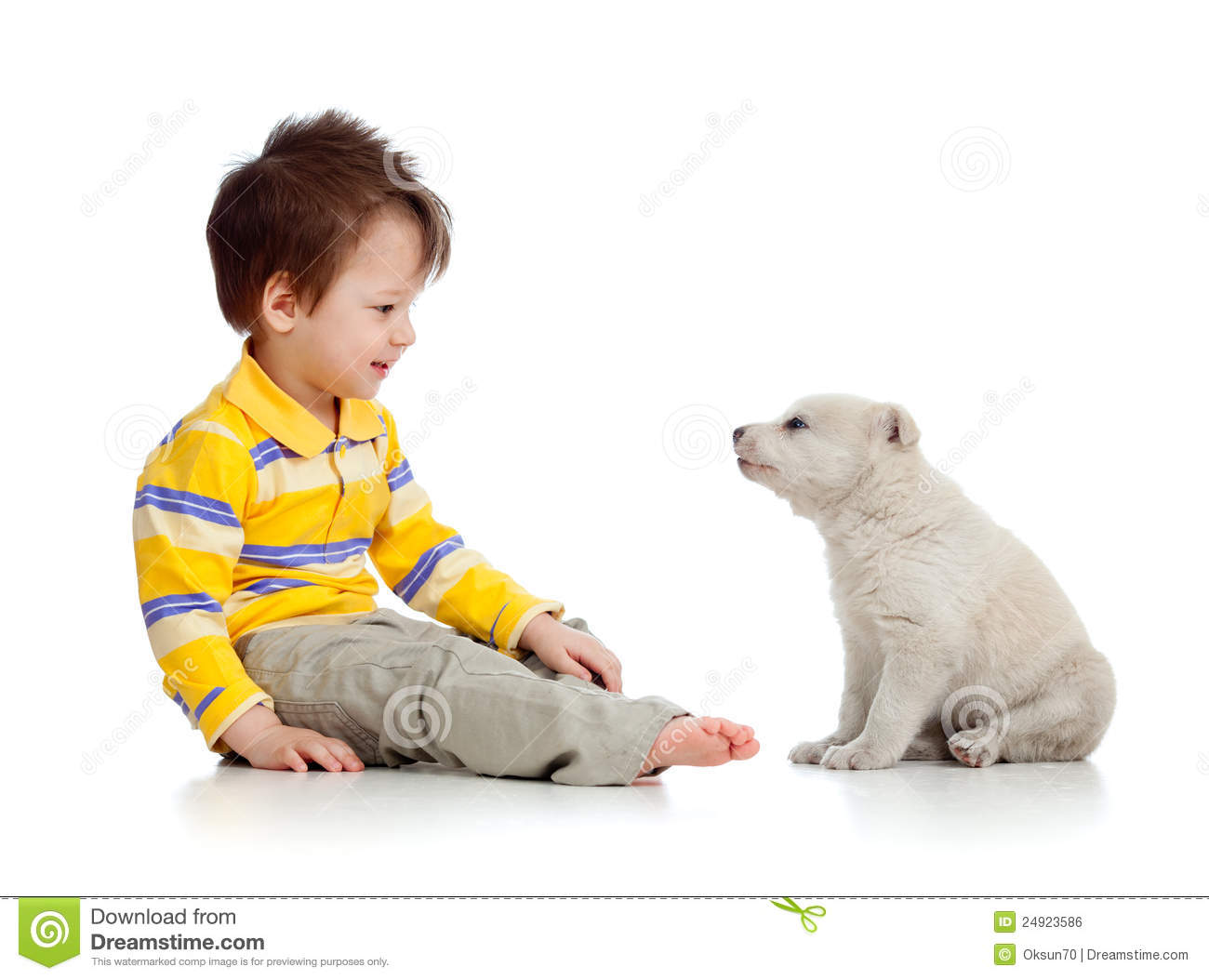 Little kid and puppy looking at each other on whit