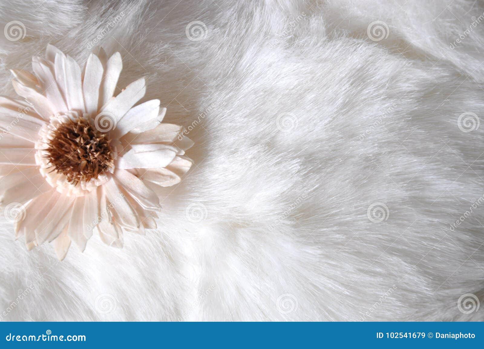 Little flower on white puffy background stock image image of download little flower on white puffy background stock image image of fabric close mightylinksfo