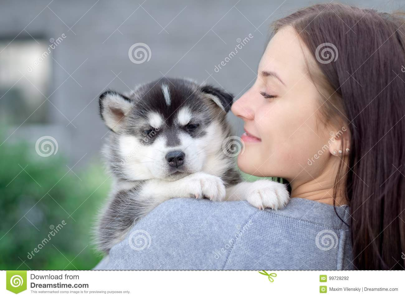 Little pretty husky puppy outdoor in womans hands