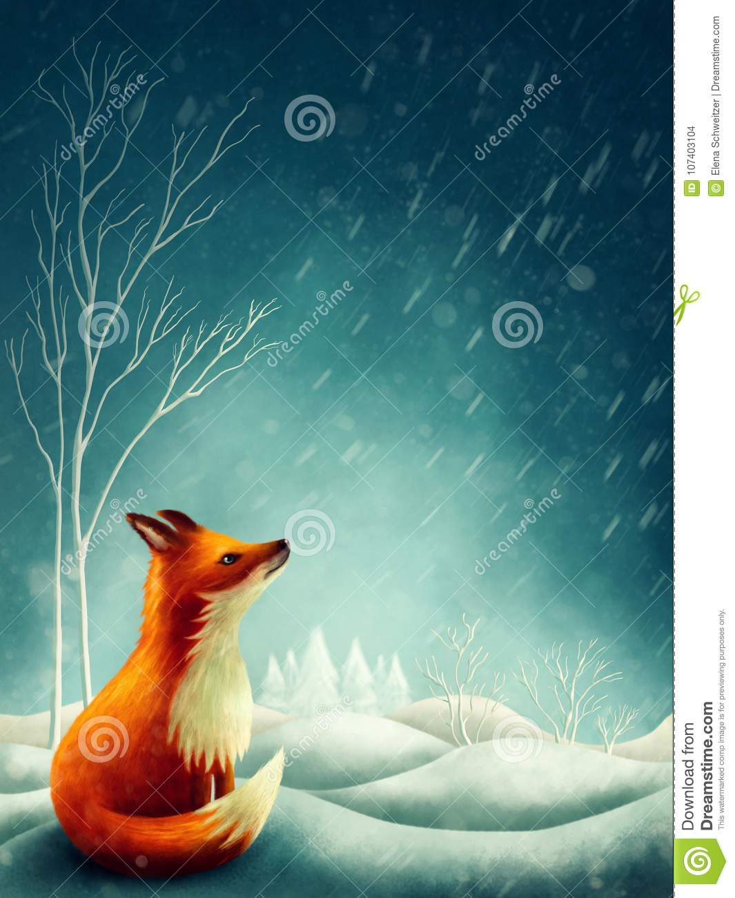 Little red fox in winter